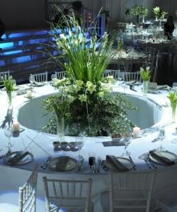 צילומי חתונה מקום (6)
